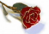 24K Real Lacquered Red Rose